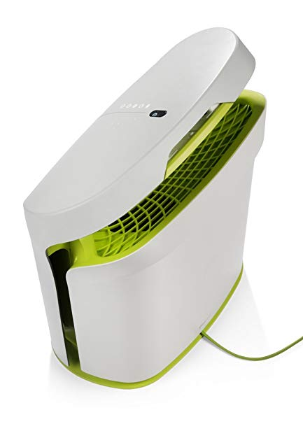 Rabbit Air BioGS 2.0 Ultra Quiet HEPA Air Purifier (SPA-625A Tone Leaf)